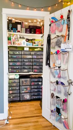 A grand tour of my majestic closet, where I store my 600+ sex toy collection. Years of organizing and fantasizing led to this: my own little sex toy museum.