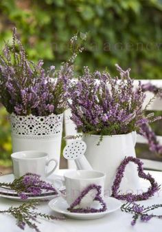 Chickens in my kitchen - flower tub and decoration for garden, terrace, home . Lavender Cottage, French Lavender, Lavender Blue, Lavender Fields, Lavender Flowers, Purple Flowers, Lavender Decor, Growing Lavender, Deco Nature