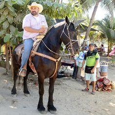 Sayulita Señorita Waves, Horses, Nature, Animals, Naturaleza, Animales, Animaux, Animal, Ocean Waves