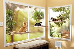 Sunny Seat Window-Mounted Cat Bed : Pet Window Perches : Pet Supplies