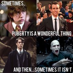 Your Daily Scoop Of funniest Harry Potter Memes Ep 16 - Swish Today Harry Potter Memes, Movie Quotes, Classic Movies, Funny, Movie Posters, Tired Funny, Film Quotes, Popcorn Posters, Wtf Funny
