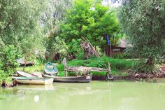 A Day In the Danube Delta | Chique Romania Danube Delta, Romania, Day, Littoral Zone