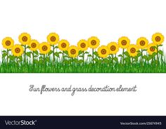 Sunflowers and grass decoration element Royalty Free Vector Wedding Album Layout, Grass Flower, Class Decoration, Baby Room Decor, Background Patterns, Animal Drawings, Scrapbook Paper, Iphone Wallpaper, Vector Free