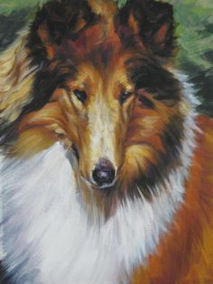 Rough Collie art print CANVAS print of LA Shepard painting 11x14 by TheDogLover on Etsy https://www.etsy.com/listing/55105655/rough-collie-art-print-canvas-print-of
