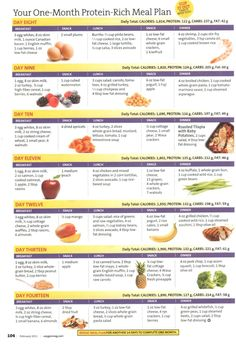 Your One-Month Protein-Rich Meal Plan - Week 2 | Fitness treats