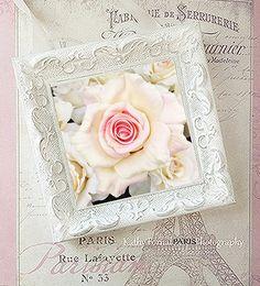 Shabby Chic Roses Decor Shabby Cottage Framed Roses Photo
