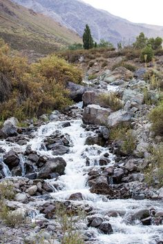 Andes Mountain Stream Miles Outside of San Jose De Maipo, Chile