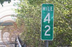 Marijuana Possession, N.J.S.A. 2c:35-10 - Route 55, Mile Post 42, Franklinville, NJ