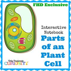 FREE PLANT CELL INTERACTIVE NOTEBOOK (Instant Download)
