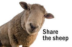 Ein einfacher Weg, ein Schaf zu sharen! Ein Klick und das Schaf ist geshared.