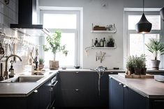 Kitchen plants decor trend plants in the kitchen kitchen plants to grow at home . Kitchen Plants, Kitchen Dining, Kitchen Decor, Kitchen Cabinets, Dark Cabinets, Cupboards, Kitchen Ideas, Black Kitchens, Home Kitchens