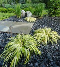 jardin zen avec herbe du Japon et gravier ardoise anthracite