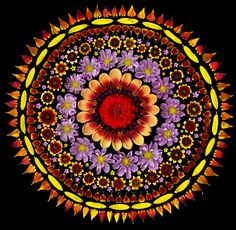 Photographs of Flower Mandalas with Real Flowers -- Breathtaking!