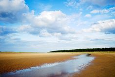 """Holkham Beach, Wells-next-the-Sea, Norfolk, England (seen in nearly every opening shot of the TV series """"Kingdom"""")"""
