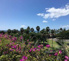Trump Waikiki Lobby on Pinterest | Trump international hotel, Waikiki ...