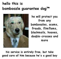 i am happy to have seen him and be able to do business with this good boi