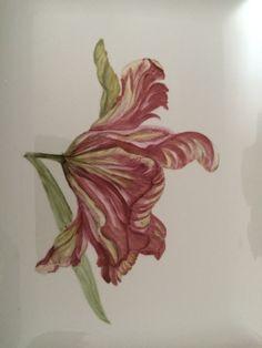 Tulipán pintado sobre porcelana