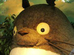 Totoro my love, en el Ghibli's Museum (: