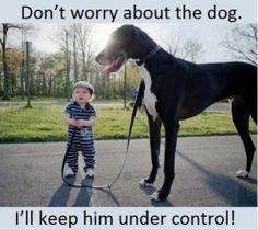 Cute kid, cute dog.