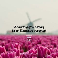 The worldly life is nothing but an illusionary enjoyment