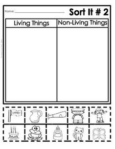FREE Living and Non-Living Things Sort (Cut and Paste Worksheets) , Cut And Paste Worksheets, Free Kindergarten Worksheets, 1st Grade Worksheets, Science Worksheets, Free Printable Worksheets, Kindergarten Science, Free Preschool, Worksheets For Kids, Science Activities