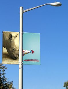 Zoobilation Campaign by Tim Winter, via Behance