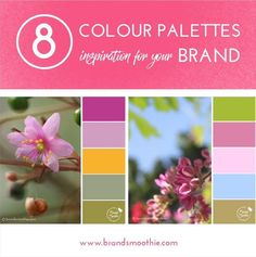 "**New on the blog** . 8 Colour Palettes inspiration for your brand. . Here's part of the interesting story that I share on the blog. It's about the power of colours: . ""There was Mary in a white box. Mary is a scientist and her expertise is about colours, she knows everything on this subject - but she lives in a white box. ...Then one day, someone opened the door and Mary came out. And here's what she sees..."" . Discover more on the blog >> brandsmoothie.com/blog . From this selection of 8…"