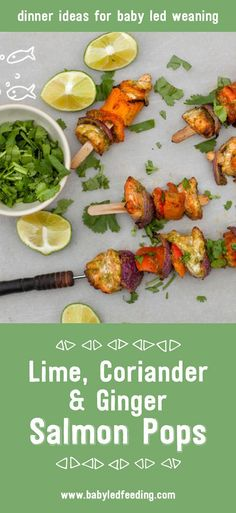 Lime, Coriander and Ginger Salmon Pops dinner recipe for tiny little baby hands. This is a very nutritious dinner recipe perfect for blw.