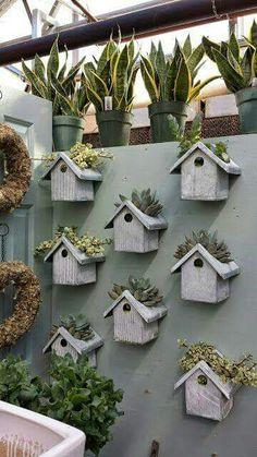 Huisies vir plante