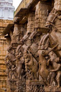 Srirangam Temple-Ayaramkaal Mandapam - Srirangam, Tamil Nadu Indian Temple Architecture, India Architecture, Ancient Architecture, Gothic Architecture, Temple India, Hindu Temple, Hampi, Madurai, Hindu Art