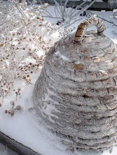 snow covered skep