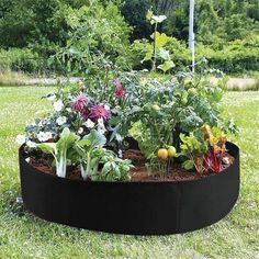 Idea soil environment for organic and no-till garden systems save water and fertilizers requires no tools and can be put up in a matter of minutes Plants For Raised Beds, Raised Garden Beds, Small Raised Garden Ideas, Garden Ideas Large, Vegetable Boxes, Vegetable Garden, Garden Soil, Garden Bags, Terrace Garden