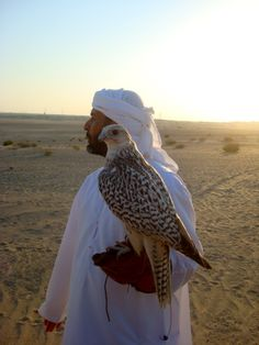 Falconer (Bird of prey to be determined)