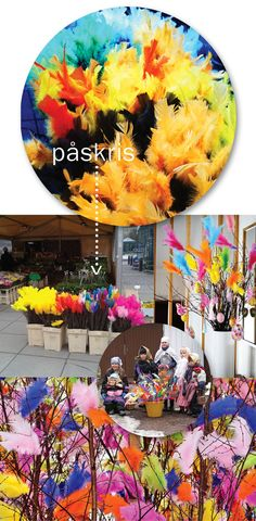Swedish Easter tradition-feather trees | Aunt Peaches via Indie Crafts Craft Gossip