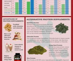 Protein Supplement Guide:  You can read through our protein supplement reviews until you are blue in the face but sometimes it helps to just take a gander at our...