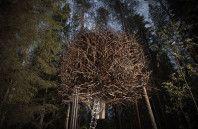 Quem nunca quis ter uma casa na árvore?