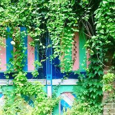 My painted door by Wesna Wilson