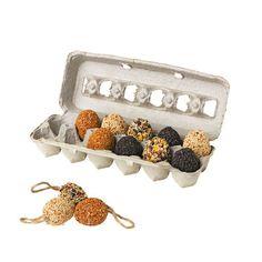 Make birdseed eggs using plastic Easter eggs, twine, egg carton, etc.