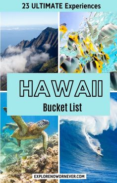 23 experiences on Maui, Kauai, Oahu, Big Island, Lanai, and Molokai you need to try! Hawaii bucket list | Maui travel | Big Island travel | Kauai travel | USA bucket list Hawaii Travel Guide, Maui Travel, Travel Usa, Croatia Travel, Nightlife Travel, Cool Places To Visit, Places To Travel, Travel Destinations, Holiday Destinations