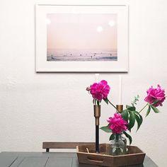 Peony season and a good clean house. . . . #pursuepretty #abmhappylife #peonies #plantsofinstagram #plantstagram #dsfloral #abmplantlady #darlingweekend