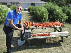 Tim Wilson pauses at his roadside vegetable stand outside his home in Germantown Hills. As a gift to the community, he gives away all of his produce -- though he accepts modest donations to help defray costs and keep the stand going every year.