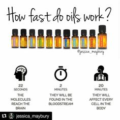"""46 Likes, 11 Comments - Shairon (@theoilyeditor) on Instagram: """"Essential oils are awesome! #Repost @jessica_maybury with @repostapp ・・・ Essential oils are…"""""""