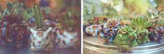 Succulents in animal pots. Makes nice party favors. Mi Alma Designs in Echo Park. 323.669.1711 (Katie or Charlie) www.mialmaonline.com