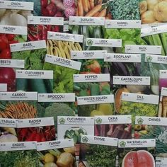 Seeds of the Month Club seed varieties by Mike the Gardener  .............   http://averagepersongardening.com/articles/SeedsoftheMonthClubseedvarieties.html#.UaTS3dhXpOe