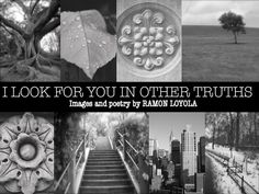 I Look For You In Other Truths by Ramon Loyola - Images and poetry