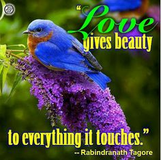 """Love gives beauty to everything it touches."" -- Rabindranath Tagore"
