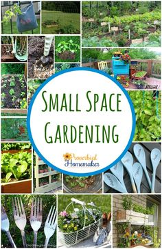 87 best Small Space Garden Ideas images on Pinterest in 2018 ...
