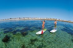 BIC Sport Dura-Tec Stand Up Paddleboard review. They are easy to ride, stable, and great for both flat water paddle boarding or down at the beach.