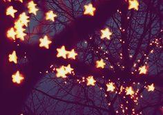 Pix For > Tumblr Tree Lights