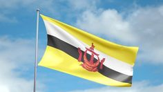 Brunei flag | flag of brunei darussalam flag